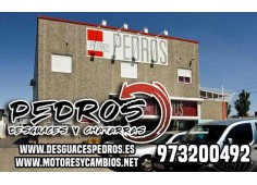 PANY PORTA POSTERIOR DRETA JEEP GR CHEROKEE (WJ-WG) 3.1 TD Laredo